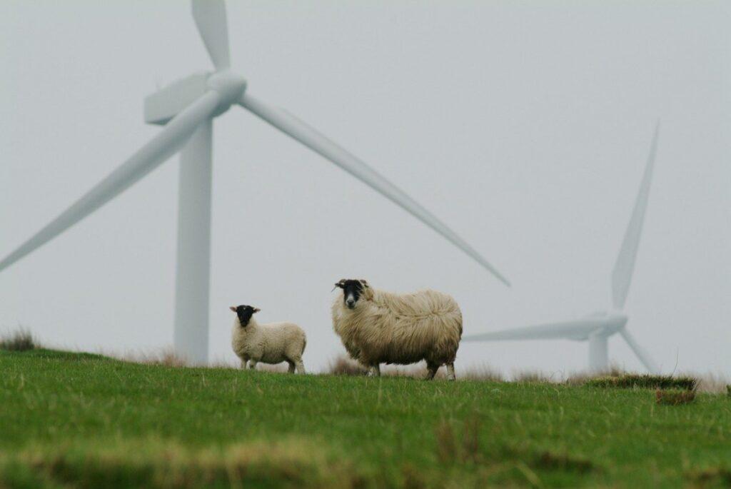 Scottish Renewable Energy Production Falls Just Short of 2020 Target