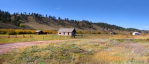 How to Decrease Your Carbon Footprint Through Abandoned How to Decrease your Carbon Footprint through Farmland Restoration